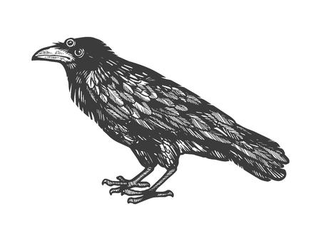 Corbeau avec trois yeux croquis illustration vectorielle de gravure. Imitation de style planche à gratter. Image dessinée à la main.