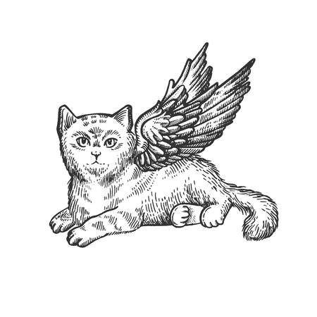 Angel flying kitten sketch engraving vector illustration. Scratch board style imitation. Black and white hand drawn image.
