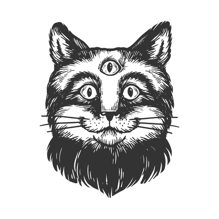 Cat with three eyes sketch engraving vector illustration. Scratch board style imitation. Hand drawn image. Ilustração