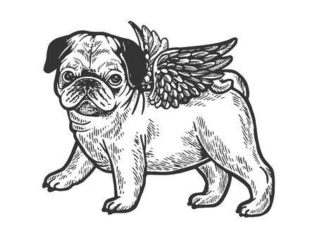 Angel flying pug dog puppy sketch engraving vector illustration. Scratch board style imitation. Black and white hand drawn image.
