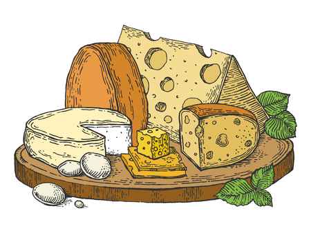 Assiette de fromage couleur croquis gravure illustration vectorielle. Imitation de style planche à gratter. Image dessinée à la main.