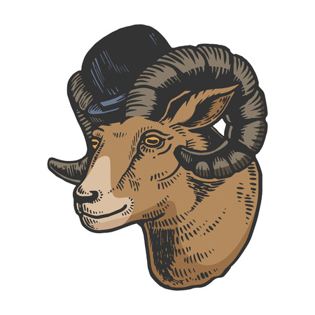 Ram animal in bowler hat color sketch engraving vector illustration. Scratch board style imitation. Black and white hand drawn image.