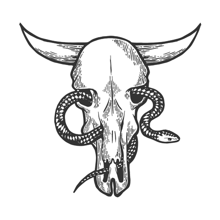 Snake in cow skull sketch engraving vector illustration. Scratch board style imitation. Black and white hand drawn image. Ilustração