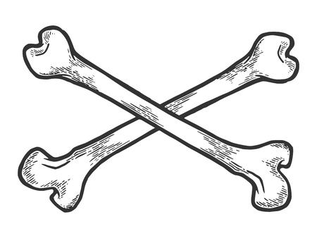 Huesos cruzados. Ilustración de vector de grabado de dibujo de símbolo de pirata. Imitación de tablero de rascar. Imagen dibujada a mano.