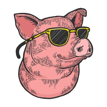Animal de porc dans l'illustration de vecteur de gravure de croquis de couleur de lunettes de soleil. Imitation de style planche à gratter. Image dessinée à la main en noir et blanc. Vecteurs