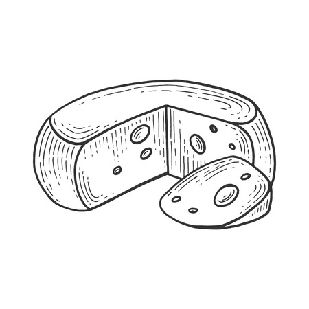 Cheese sketch engraving vector illustration. Scratch board style imitation. Hand drawn image.