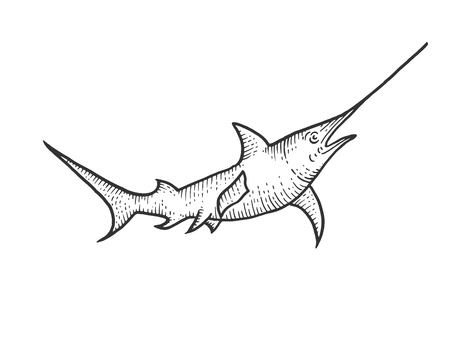 Swordfish sketch engraving vector illustration. Scratch board style imitation. Hand drawn image.