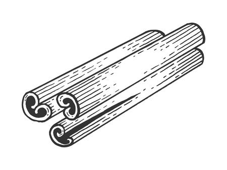 Zimt Gewürz Skizze Gravur Vektor-Illustration. Nachahmung im Scratchboard-Stil. Handgezeichnetes Bild.