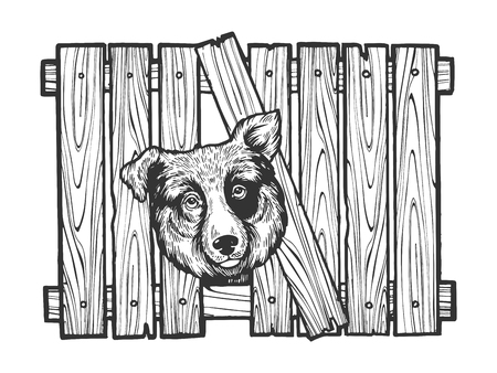 Dog head stuck in fence sketch engraving vector illustration. Scratch board style imitation. Hand drawn image.