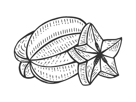 Carambola fruit sketch engraving vector illustration. Scratch board style imitation. Hand drawn image.