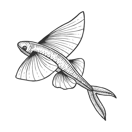 Flying fish animal sketch engraving vector illustration. Scratch board style imitation. Black and white hand drawn image.