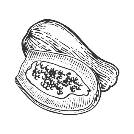 Papaya exotic fruit sketch engraving vector illustration. Scratch board style imitation. Black and white hand drawn image. Ilustração Vetorial