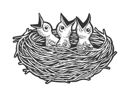 Pájaro en nido en boceto grabado ilustración vectorial. Imitación de tablero de rascar. Imagen dibujada a mano en blanco y negro.