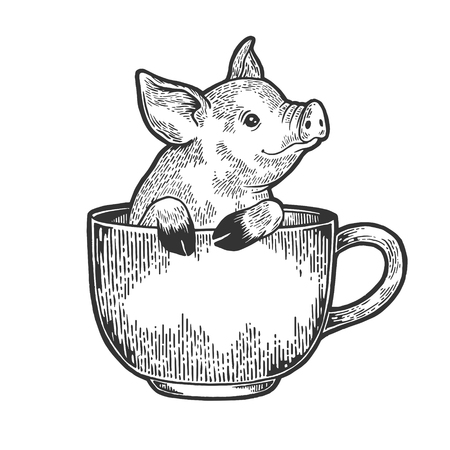 Little pig animal in coffee cup sketch engraving vector illustration. Scratch board style imitation. Black and white hand drawn image.