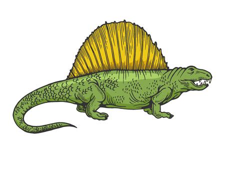 Dimetrodon dinosaur prehistoric extinct animal color sketch engraving vector illustration. Scratch board style imitation. Black and white hand drawn image.