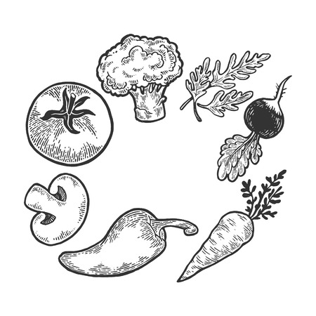 Vegetables vegan food sketch engraving vector illustration. Scratch board style imitation. Black and white hand drawn image. Illusztráció