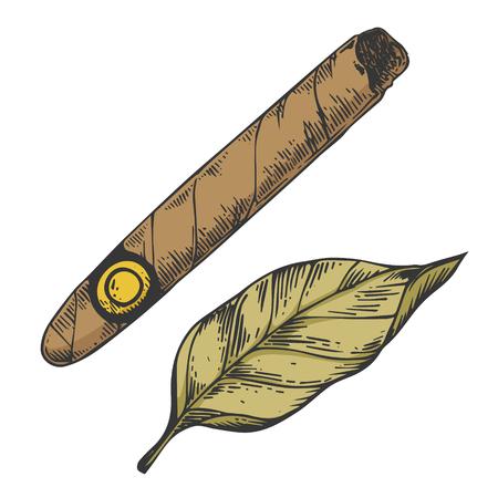 Zigarre und Tabakblatt Farbskizze Gravur Vector Illustration. Nachahmung im Scratchboard-Stil. Handgezeichnetes Schwarz-Weiß-Bild.
