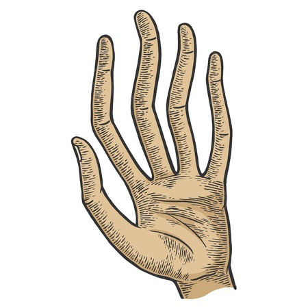 Hand with long spaghetti fingers color sketch engraving vector illustration. Scratch board style imitation. Hand drawn image.