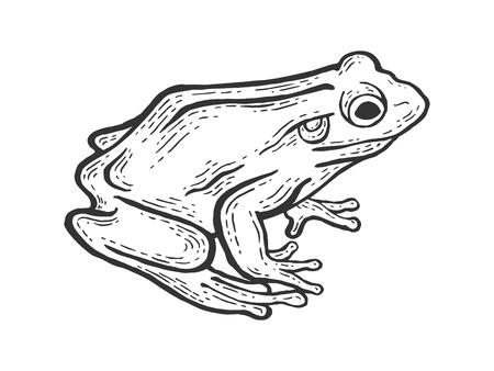 Frog toad animal sketch engraving vector illustration. Scratch board style imitation. Black and white hand drawn image. Ilustração