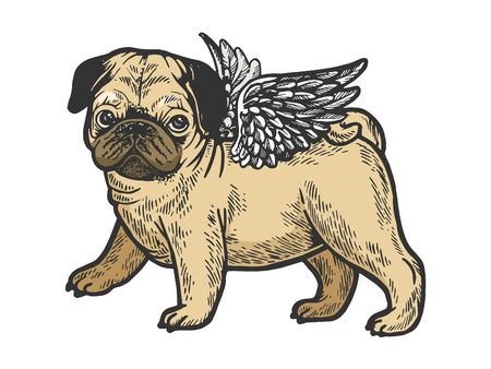 Angel flying pug dog puppy color sketch engraving vector illustration. Scratch board style imitation. Black and white hand drawn image.  イラスト・ベクター素材