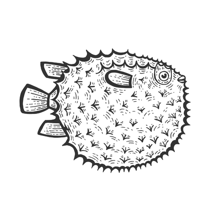 Fugu poisonous toxic fish animal sketch engraving vector illustration. Scratch board style imitation. Black and white hand drawn image.