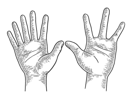 Unusual hands with six and four fingers sketch engraving vector illustration. Scratch board style imitation. Black and white hand drawn image. Illustration