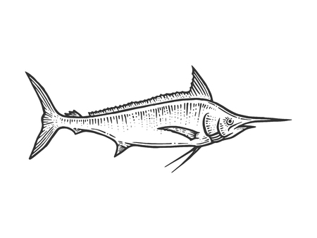 Swordfish marlin sketch line art engraving vector illustration. Scratch board style imitation. Hand drawn image.