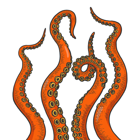 Tentáculo de pulpo establece la ilustración de vector de grabado de arte de línea de boceto de color. Imitación de tablero de rascar. Imagen dibujada a mano en blanco y negro. Ilustración de vector