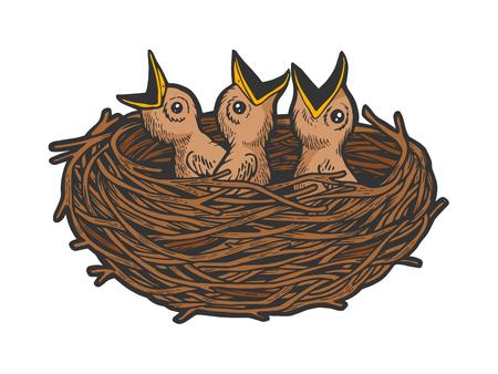 Adagiato uccello nel nido colore schizzo linea arte incisione illustrazione vettoriale. Imitazione di stile scratch board. Immagine disegnata a mano in bianco e nero.