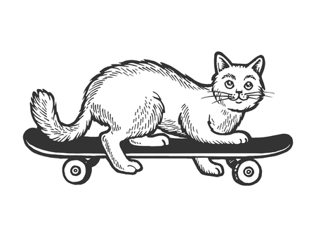 Domestic cat pet ride on skateboard sketch engraving vector illustration. Scratch board style imitation. Black and white hand drawn image.