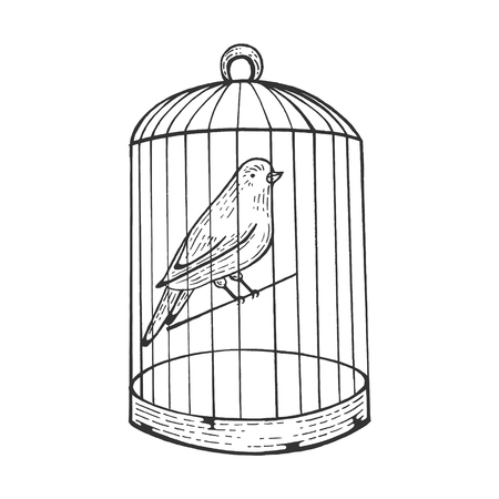 Uccello canarino in gabbia con illustrazione vettoriale di incisione porta aperta. Imitazione di stile scratch board. Immagine disegnata a mano.