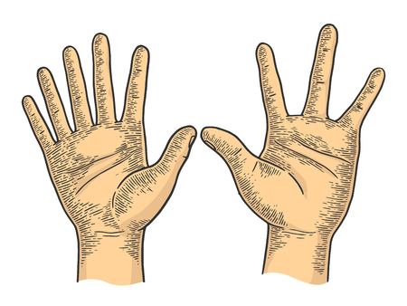 Unusual hands with six and four fingers color sketch engraving vector illustration. Scratch board style imitation. Black and white hand drawn image.