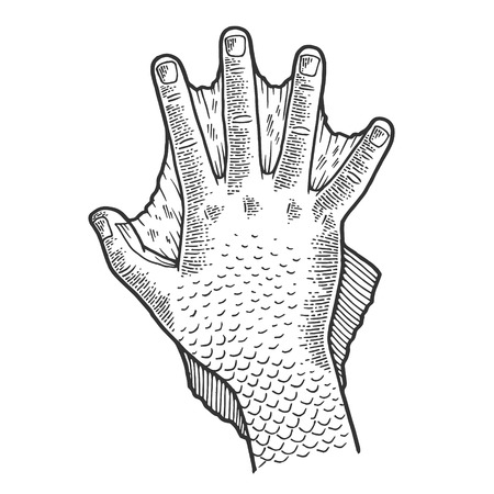 Hand of fabulous man amphibians sketch engraving vector illustration. Scratch board style imitation. Black and white hand drawn image.