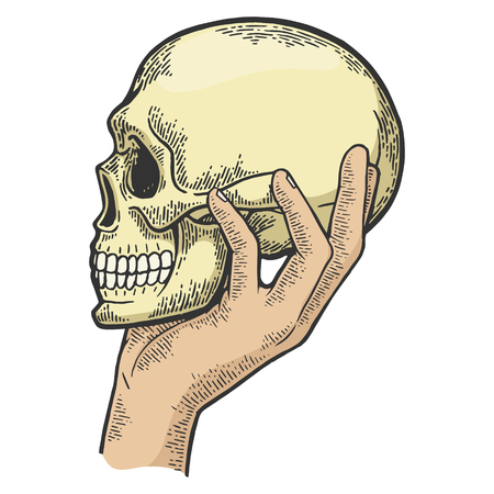 Human skull in hand sketch engraving vector illustration. Scratch board style imitation. Black and white hand drawn image. Foto de archivo - 128502585