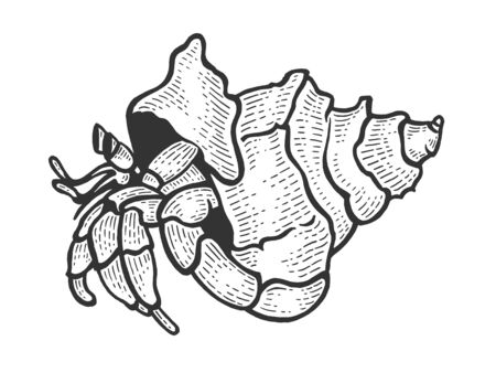 Hermit crab sea animal sketch engraving vector illustration. Scratch board style imitation. Black and white hand drawn image. Illustration