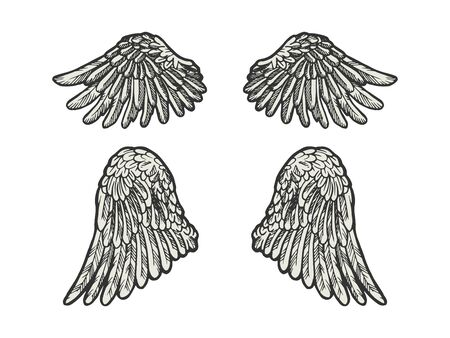 Bird angel wings set sketch engraving vector illustration. Scratch board style imitation. Black and white hand drawn image.  イラスト・ベクター素材