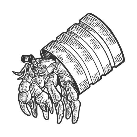 Hermit crab sea animal in tin can sketch engraving vector illustration. Scratch board style imitation. Black and white hand drawn image.