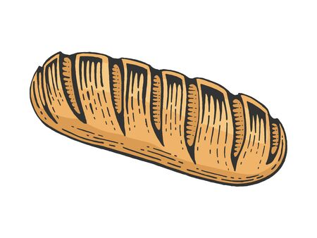 Bread loaf color sketch engraving vector illustration. Scratch board style imitation. Black and white hand drawn image.