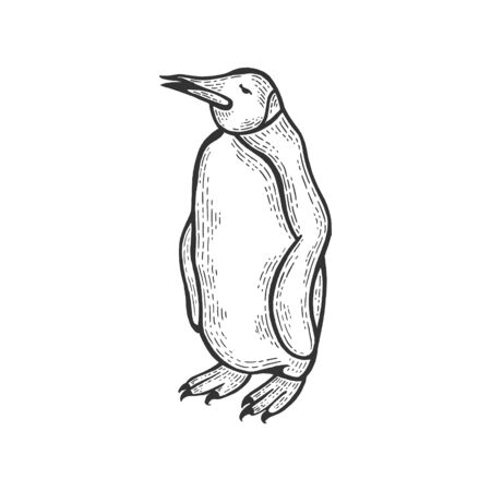 Penguin bird animal sketch engraving vector illustration. Scratch board style imitation. Hand drawn image.