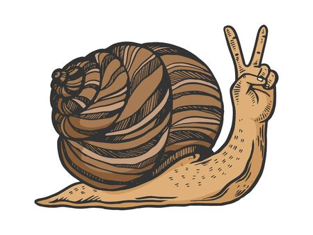 Fantastic fabulous snail with human hand instead head animal color sketch engraving vector illustration. Scratch board style imitation. Black and white hand drawn image. Ilustração