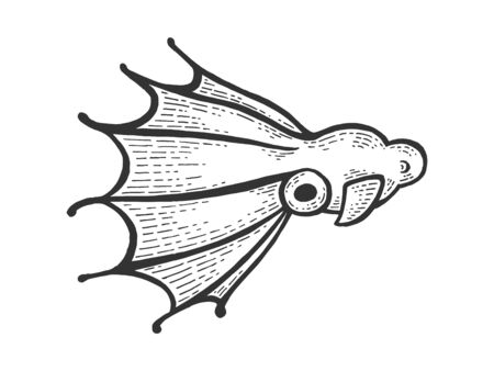 Vampire squid sea water animal sketch engraving vector illustration. Scratch board style imitation. Black and white hand drawn image.