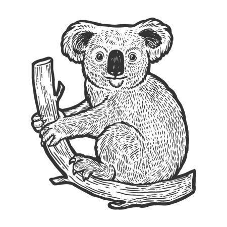 Animal de oso koala en la ilustración de vector de dibujo de árbol grabado. Imitación de tablero de rascar. Imagen dibujada a mano en blanco y negro.