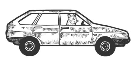 Cat driving car sketch engraving vector illustration. Scratch board style imitation. Black and white hand drawn image. Illusztráció