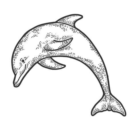 Delfín saltando de agua dibujo grabado ilustración vectorial. Imitación de tablero de rascar. Imagen dibujada a mano.
