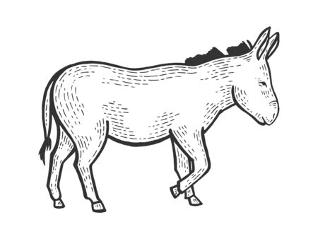 Donkey animal on tree sketch engraving vector illustration. Scratch board style imitation. Black and white hand drawn image. Illustration