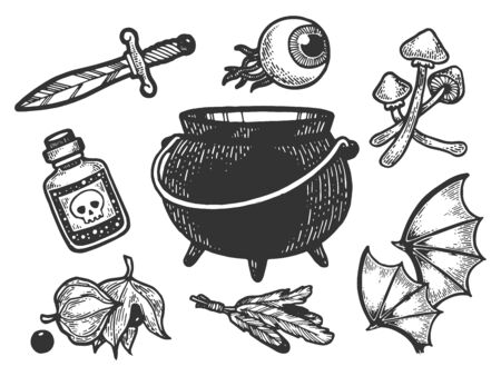 Magical fabulous witch ingredients items sketch engraving vector illustration. Scratch board style imitation. Hand drawn image. Illustration