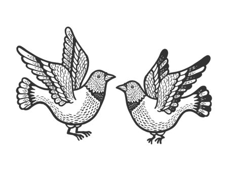 Dove pigeon birds tattoo sketch engraving vector illustration. Scratch board style imitation. Hand drawn image.