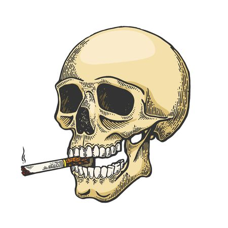 Skull smoking cigarette color sketch engraving vector illustration. Scratch board style imitation. Black and white hand drawn image.