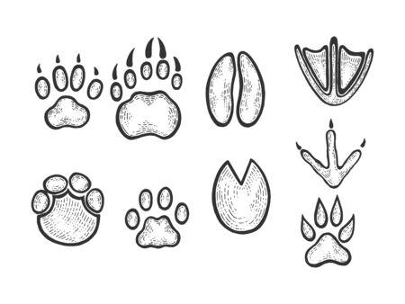Animal tracks sketch engraving vector illustration. Scratch board style imitation. Black and white hand drawn image. Banco de Imagens - 128502756