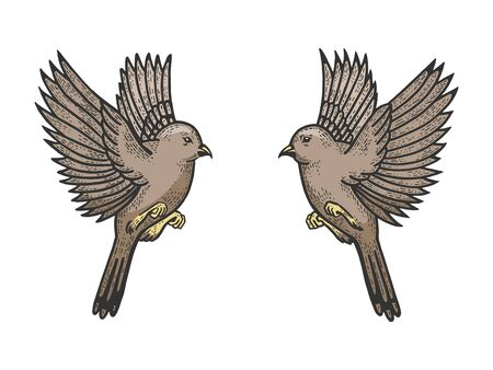 Sparrow birds tattoo color sketch engraving vector illustration. Scratch board style imitation. Hand drawn image.